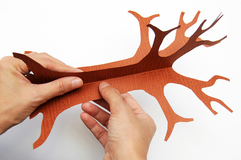 3D Paper Tree Craft