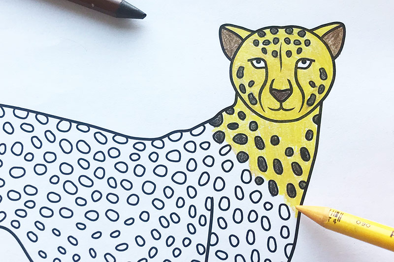 Cheetah Free Printable Templates Amp Coloring Pages