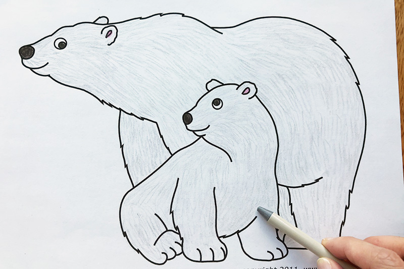 picture about Printable Polar Bear Pictures known as Polar Undertake Free of charge Printable Templates Coloring Internet pages
