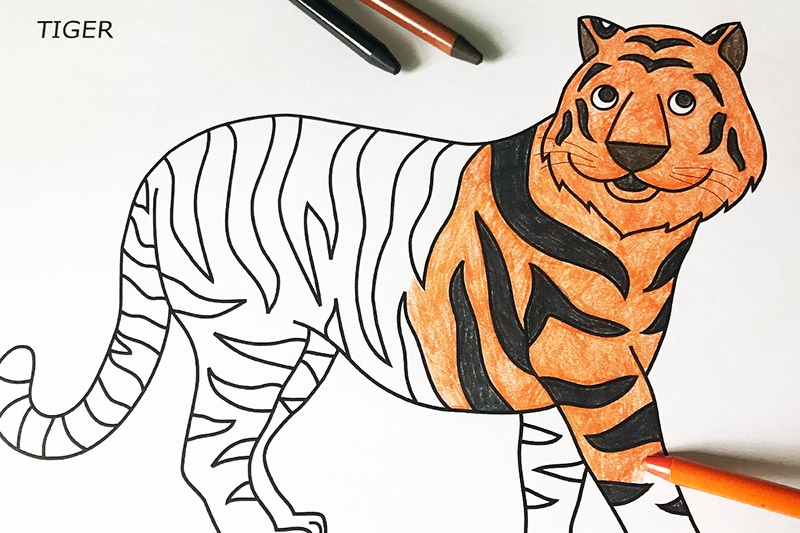 Tiger | Free Printable Templates & Coloring Pages ...