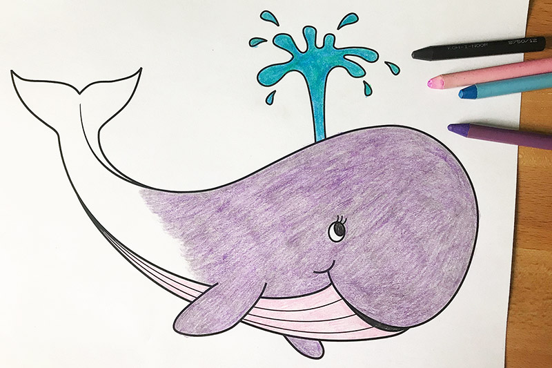 graphic regarding Whale Templates Printable referred to as Whale Cost-free Printable Templates Coloring Webpages