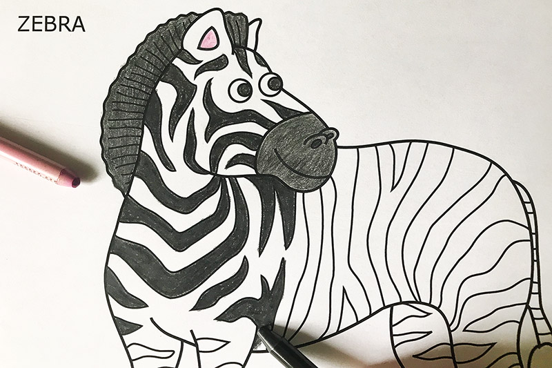 graphic about Zebra Coloring Pages Printable called Zebra Absolutely free Printable Templates Coloring Webpages