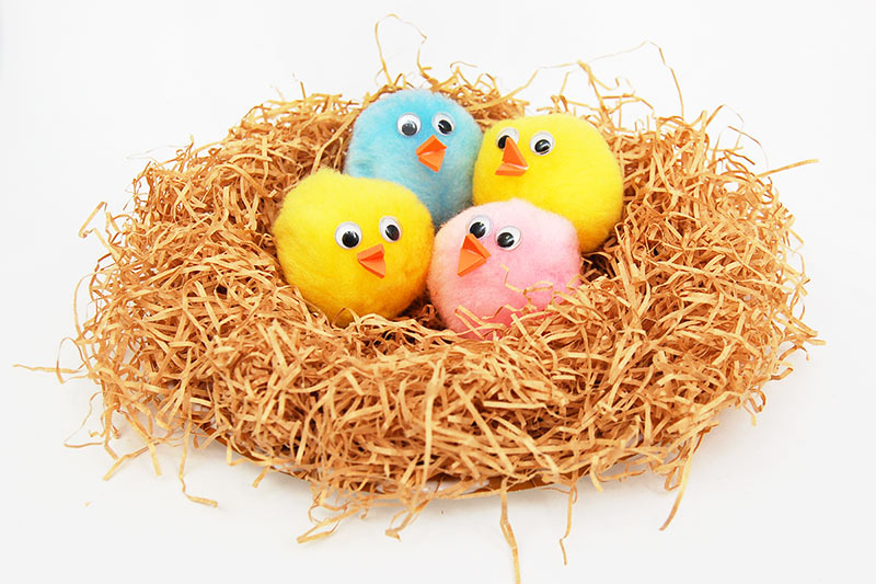 Baby Birds In A Nest Kids Crafts Fun Craft Ideas Firstpalette Com