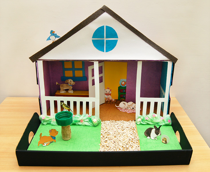 Pet Diorama Kids Crafts Fun Craft Ideas