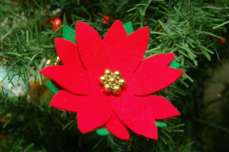 Poinsettia Ornament Craft