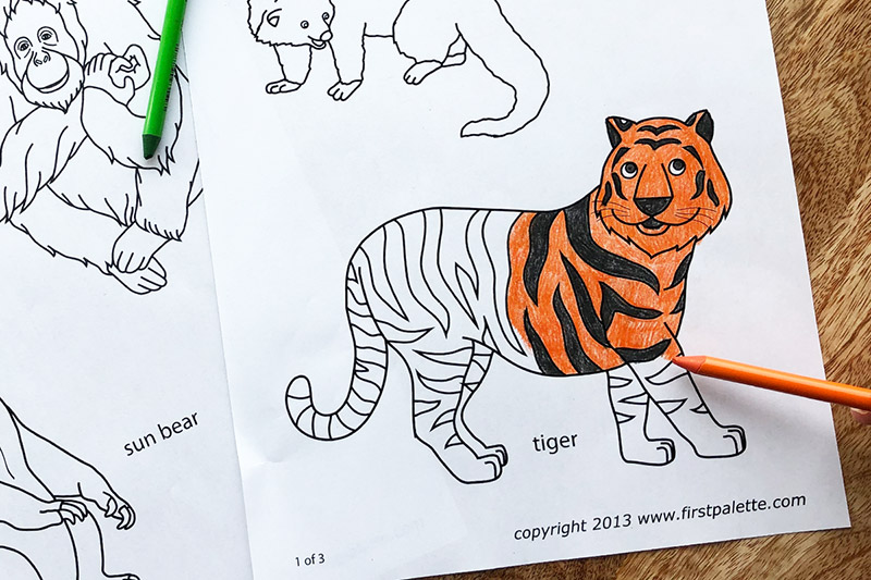 Asian Jungle or Rainforest Animals | Free Printable ...