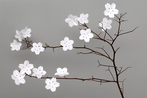 Paper Cherry Blossoms craft