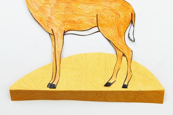 African Savanna Diorama | Kids' Crafts | Fun Craft Ideas