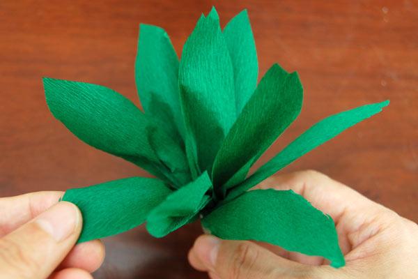 Diorama Plants and Trees | Kids' Crafts | Fun Craft Ideas