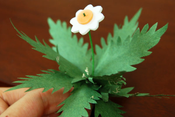 Make plants with flowers.