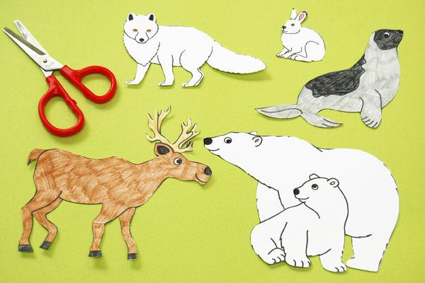 Polar Habitat Diorama Kids Crafts Fun Craft Ideas
