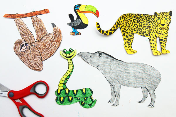 Rainforest Habitat Diorama Kids Crafts Fun Craft Ideas