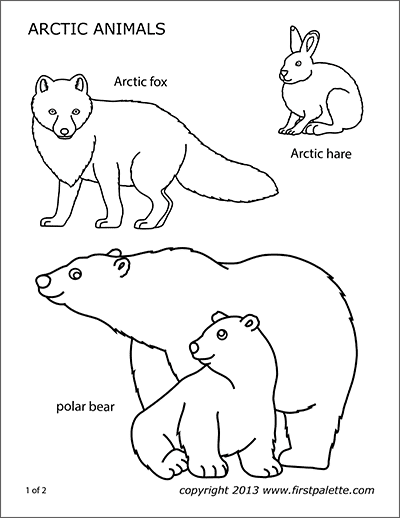 Printable Arctic Polar Animals