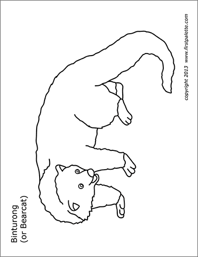Printable Bearcat or Binturong