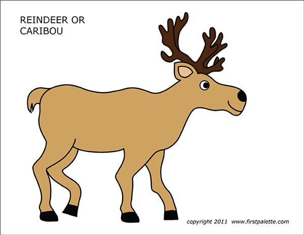 Printable Colored Caribou