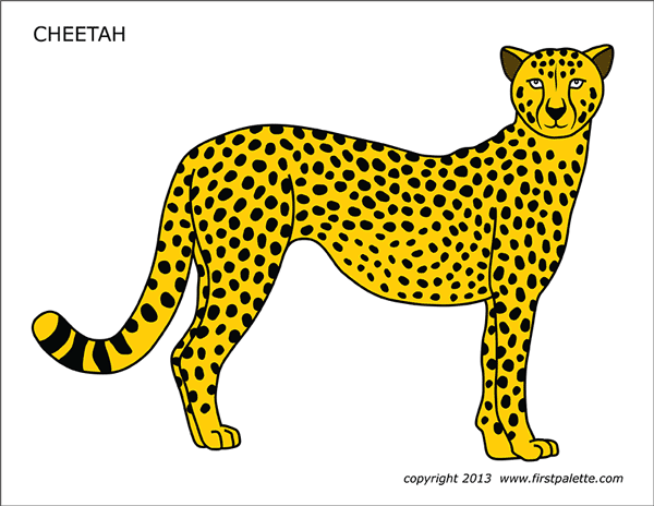 Cheetah Free Printable Templates Coloring Pages