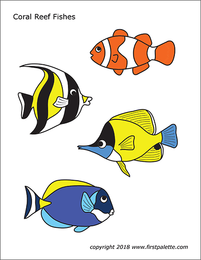 Printable Colored Coral Reef Fishes
