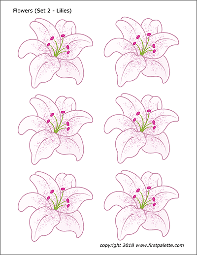 Printable Colored Flower Set 2 - Lilies