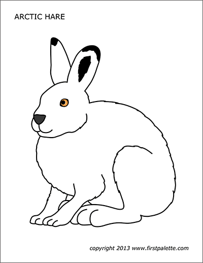 Hare Free Printable Templates
