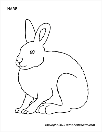 Printable Hare or Rabbit