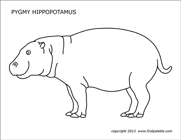 Hippo Coloring Pages Gallery - Whitesbelfast | 464x600