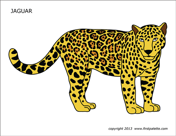 Jaguar Free Printable Templates Amp Coloring Pages