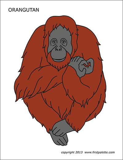 orangutan-color Valentine S Day New Letter Templates on valentine's day ladies night party, valentine's day postcard templates, valentine's day love letters for her, large printable block letters template, applebee's pancake breakfast flyer template, valentine's day quotes for friends, valentine's day class party ideas, valentine's day coloring templates, valentine's day letters for boyfriend, valentine's day ribbon borders, valentine's day programs, valentine's day quotes inspirational, valentine's day clip art, valentine's day quotes and sayings, valentine's day box templates, valentine's tickets template, valentine's day certificate templates, valentine's day stationery,