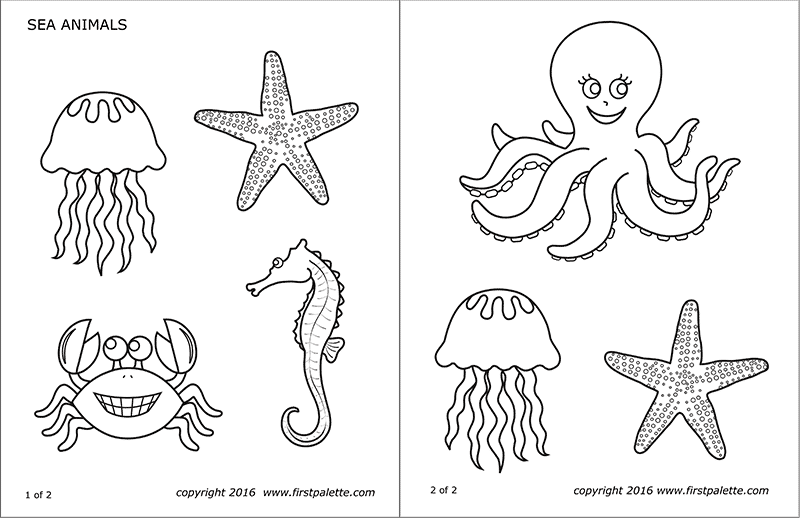 picture about Animal Printable titled Sea Pets Cost-free Printable Templates Coloring Webpages