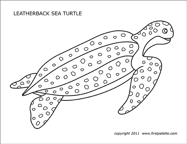 photo relating to Turtle Template Printable named Sea Turtles Cost-free Printable Templates Coloring Webpages