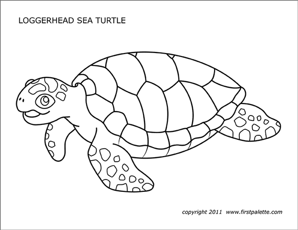 photo regarding Turtle Template Printable referred to as Sea Turtles Free of charge Printable Templates Coloring Webpages