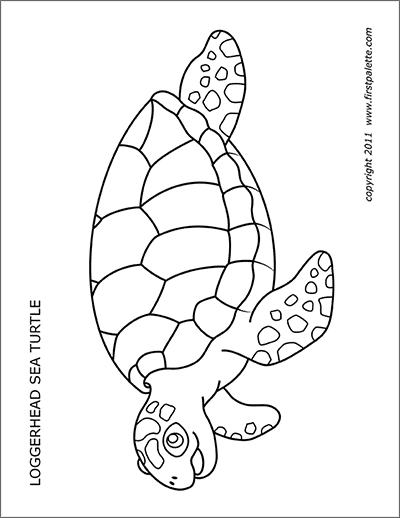 Printable Sea Turtles