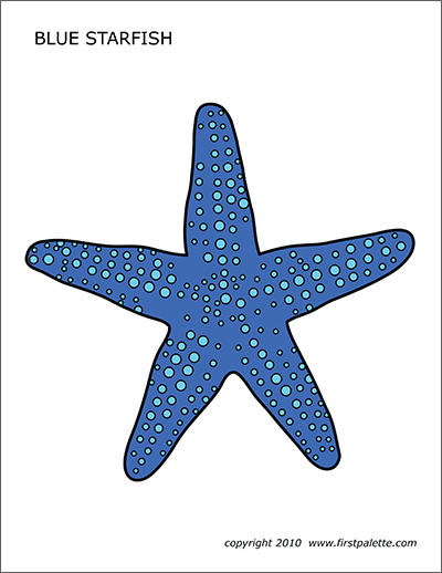 starfish-blue Valentine S Day New Letter Templates on valentine's day ladies night party, valentine's day postcard templates, valentine's day love letters for her, large printable block letters template, applebee's pancake breakfast flyer template, valentine's day quotes for friends, valentine's day class party ideas, valentine's day coloring templates, valentine's day letters for boyfriend, valentine's day ribbon borders, valentine's day programs, valentine's day quotes inspirational, valentine's day clip art, valentine's day quotes and sayings, valentine's day box templates, valentine's tickets template, valentine's day certificate templates, valentine's day stationery,