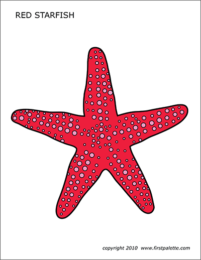 Magnificent Starfish Free Printable Templates Coloring Pages Download Free Architecture Designs Scobabritishbridgeorg
