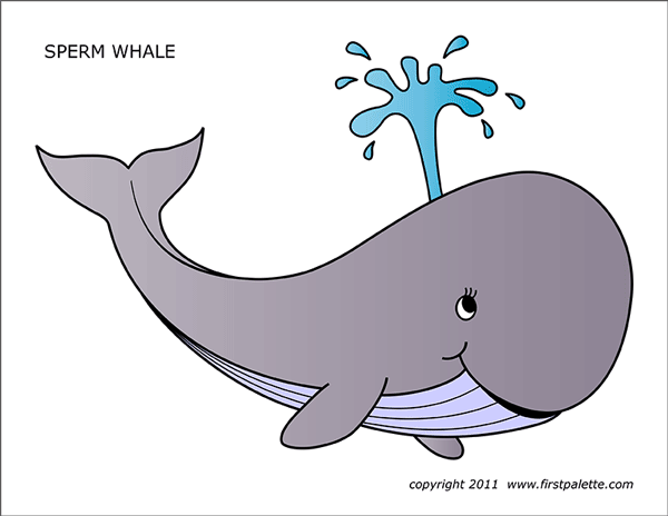 picture about Whale Printable identified as Whale Absolutely free Printable Templates Coloring Web pages